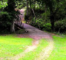 Country Path by Sharksladie