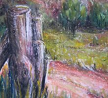 Fence Post in Flinders Ranges by Heather Holland by Heatherian