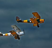Tiger Moth Formation by JohnKarmouche