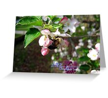 sweet taste of spring Greeting Card