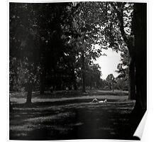 Sun Bather, Central Park Poster