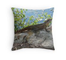 Rock - Solid Steady Throw Pillow