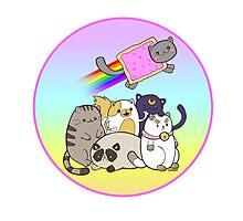 Cat Pile! Photographic Print