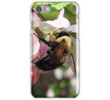 sweet taste of spring iPhone Case/Skin