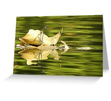 You Steer, and I Will Keep A look Out!!!  Greeting Card