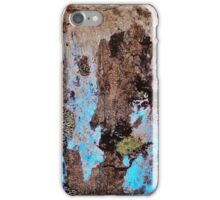 Glacier Map iPhone Case/Skin