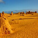 """The Pinnacles"" by Sue  Fellows"