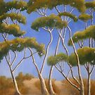 Spindley Trees near Geelong by Mrswillow