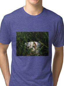 CASH THE BULL-CUTE-DOG Tri-blend T-Shirt