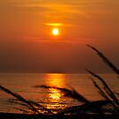 Simple Sunrise by Corkle
