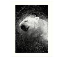 Polar Bear in Central Park Zoo NYC Art Print