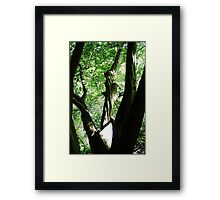 Birth: Of a Holy Prism Framed Print