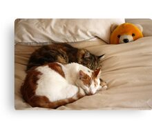 Nap time with Pooh Canvas Print