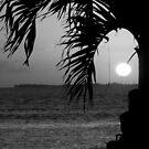 Sunset Girl B&W by Nancee Rainaud
