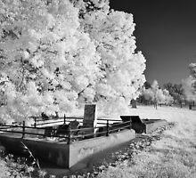 At Peace by Craig Hender