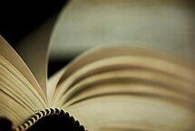 the novel by Anthony Mancuso