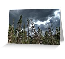 """Standing """"up"""" to the weather! Greeting Card"""