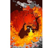 Firestorm Photographic Print