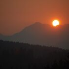Summer Sunrise - Over Burke Mtn. Coquitlam, Canada... by Carol Clifford