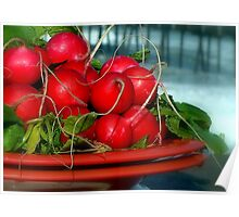 Radishes With Ocean Mist Poster