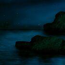 At night..... by nishagandhi