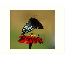 Fly Away, Fly Away Art Print