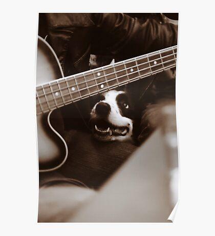 Dog & Bass Poster