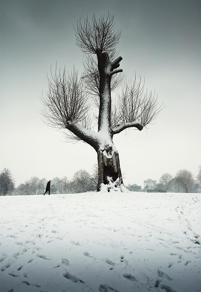 Broken and Cold by Alan Watt