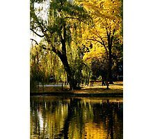 Reflection in the Boston Commons Photographic Print