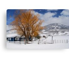 Outstanding in Orange - Snow Scene Canvas Print