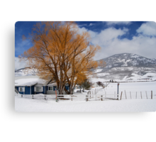 Outstanding in Orange - Snow Scene Canvas Print