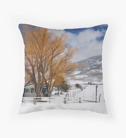 Outstanding in Orange - Snow Scene Throw Pillow