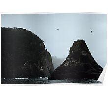 Rocky Outcrop, Tasman Peninsula, Tasmania Poster