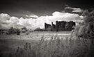 Kenilworth Castle, Warwickshire, UK by George Parapadakis (monocotylidono)