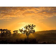 Sunrise Padthaway, South Australia Photographic Print