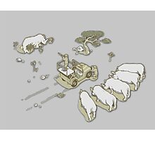 Clever rhinos Photographic Print