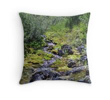 Flowing Diamonds Throw Pillow