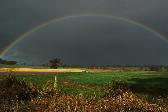 A Cranbrook Rainbow by Eve Parry