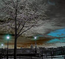 Solarisation by Laurent Hunziker