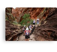 A bit of outback help in the Bungles Canvas Print