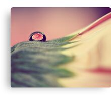 Through The Water Drop Canvas Print