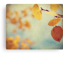 Aspen Leaves In The Wind Canvas Print