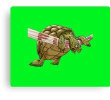 turtle's race Canvas Print