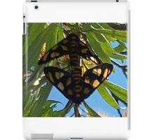 Paired Butterflies iPad Case/Skin
