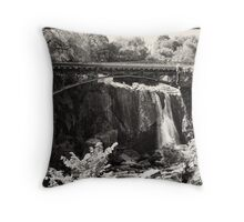 The Falls of Paterson, NJ Throw Pillow