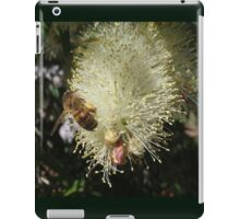 Bee on Beautiful Bottlebrush iPad Case/Skin