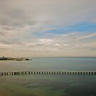Queenscliff Looking Out by dazzleng