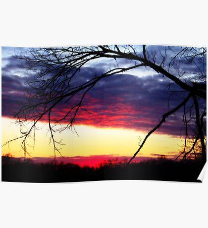 Sunset In December Poster