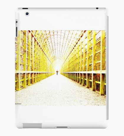 quest iPad Case/Skin