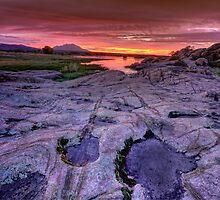 Rocky Pink by Bob Larson